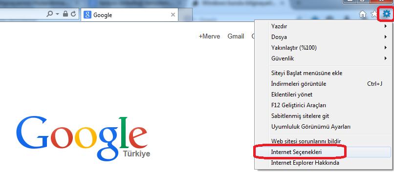 internet explorer gözatma geçmişi silme (1)
